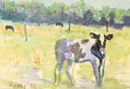Calf in a Pasture Watercolor